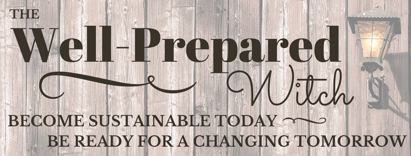 The Well-Prepared Witch: become sustainable today - be ready for a changing tomorrow